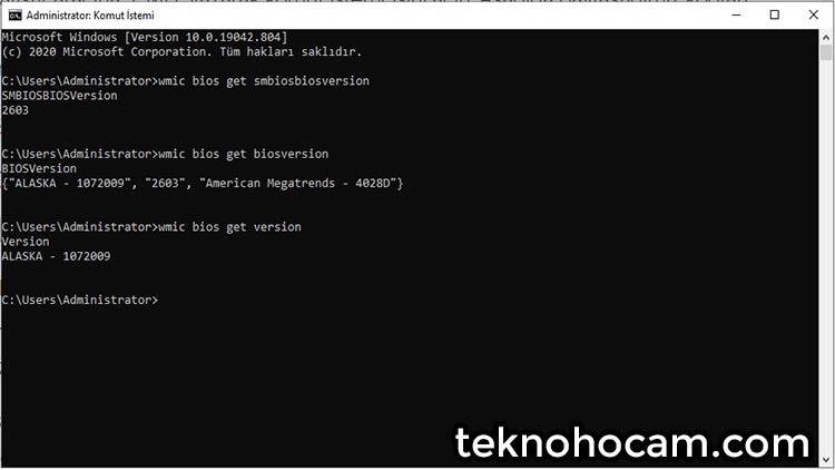 Programsız BIOS Sürümü Öğrenme